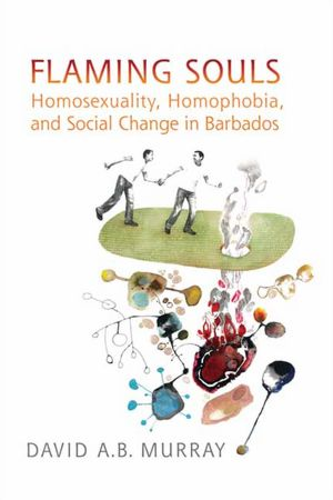 Flaming Souls, Homosexuality, Homophobia, and Social Change in Barbados, david murray