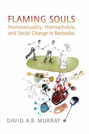 Flaming Souls, Homosexuality, Homophobia, and Social Change in Barbados, david murray